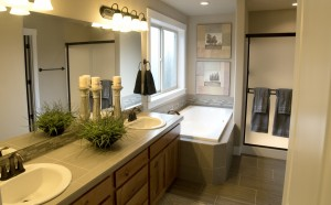 Master bathroom (2509 model)